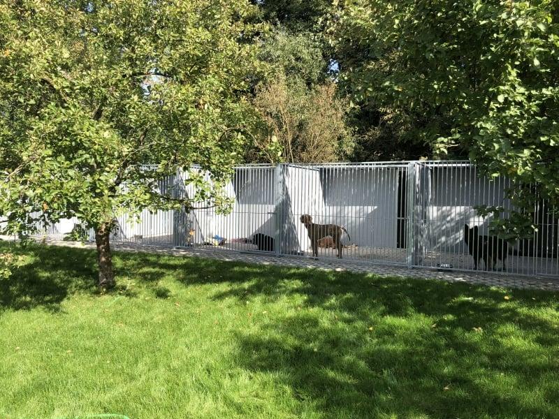 6 Fach Kunststoff Hundezwingeranlage