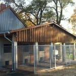 Hundezwingeranlage mit Ausläufen aus Gittergewebe 50 x 50 x 4 mm