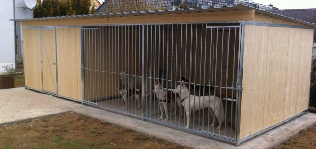 Anbauraum, Welpenraum, Züchterraum für Hundezwinger