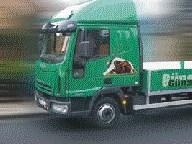 Auslieferungsfahrzeug Günstige Hundezwinger